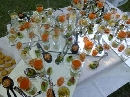 Capodanno Reggio Emilia Foto - Capodanno Agriturismo Podere Canovi Reggio Emilia